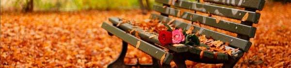 flower_chair